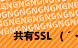 wordpress共有SSLが使えない!?